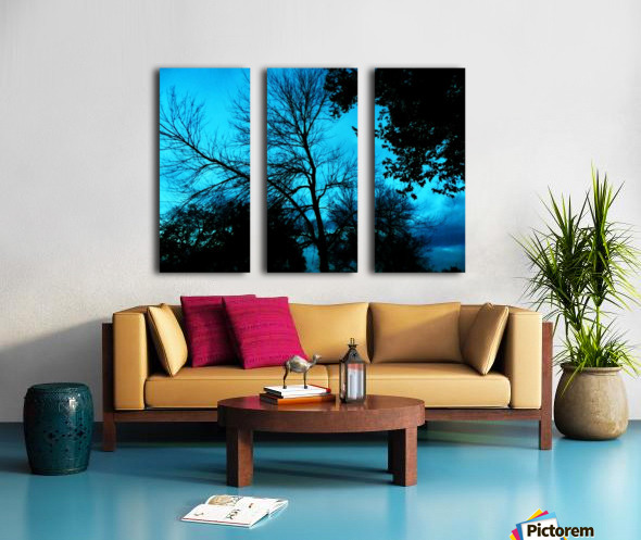A (4) Split Canvas print