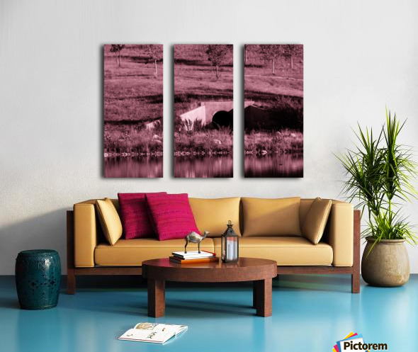 B (12) Split Canvas print