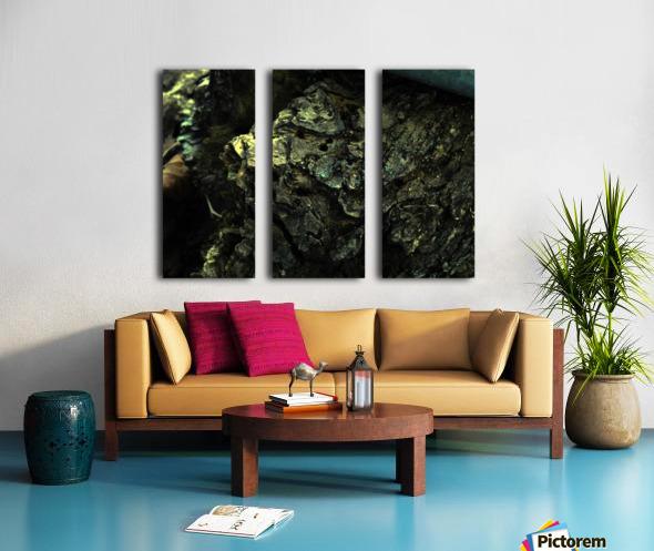 B (3) Split Canvas print