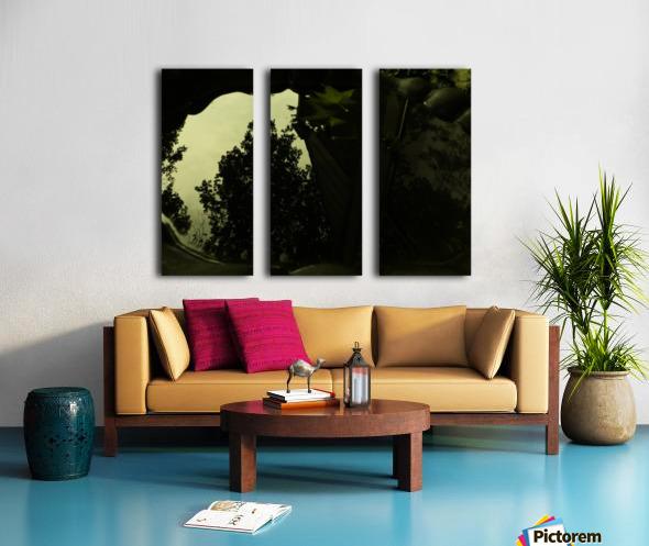 sofn-2B688FDF Split Canvas print