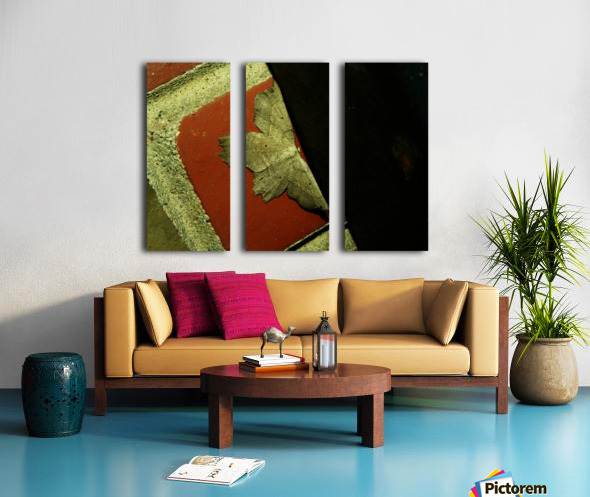 sofn-4D749FB8 Split Canvas print