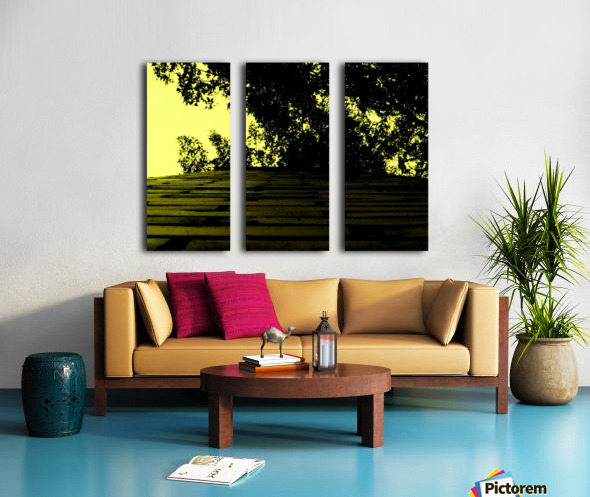 sofn-66E4BA18 Split Canvas print