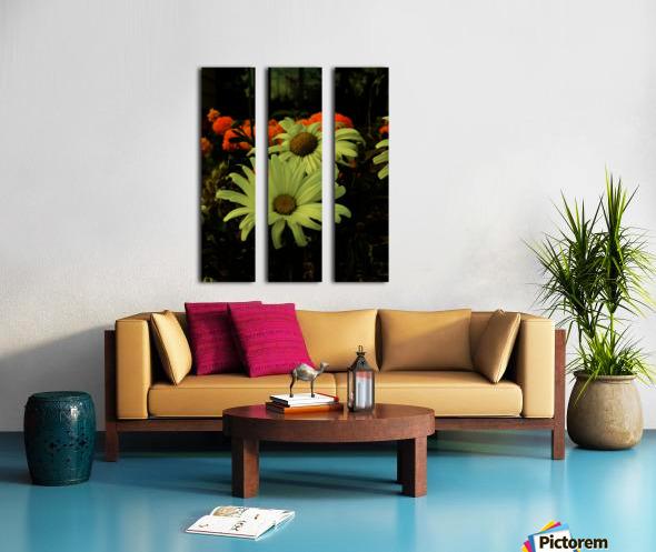 D (12) Split Canvas print