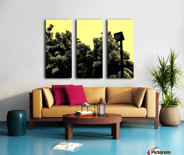 D (10) Split Canvas print
