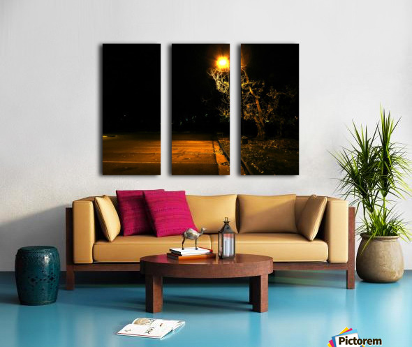 D (11) Split Canvas print