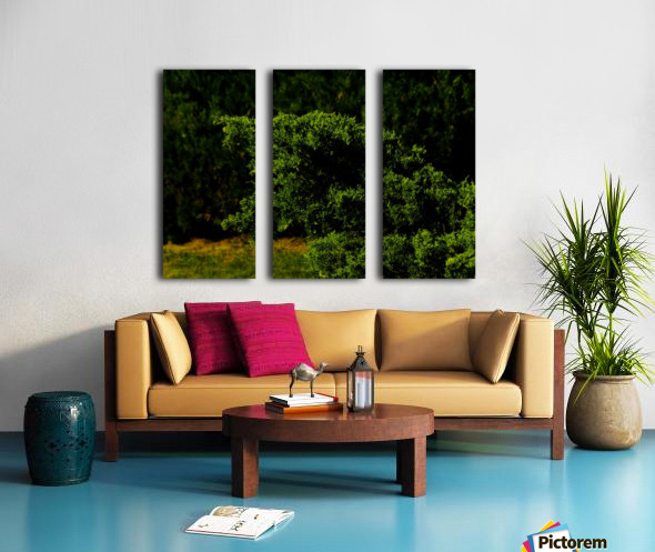 F (15) Split Canvas print