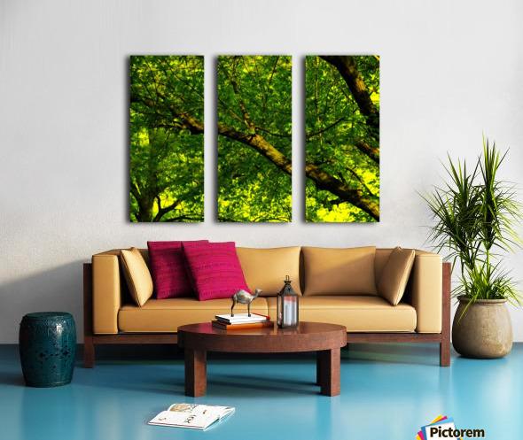 sofn-C1F96356 Split Canvas print