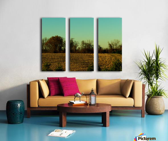 sofn-840D8D25 Split Canvas print