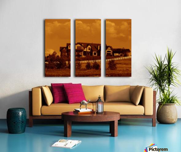 sofn-5D9BE0B7 Split Canvas print