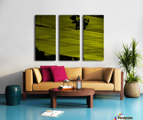 sofn-330900A2 Split Canvas print