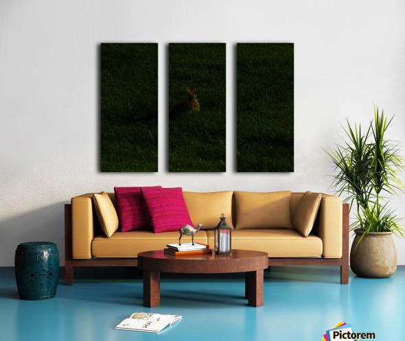 H (11) Split Canvas print