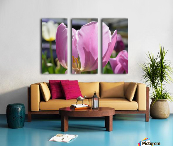 Purple Tulip Photograph Split Canvas print