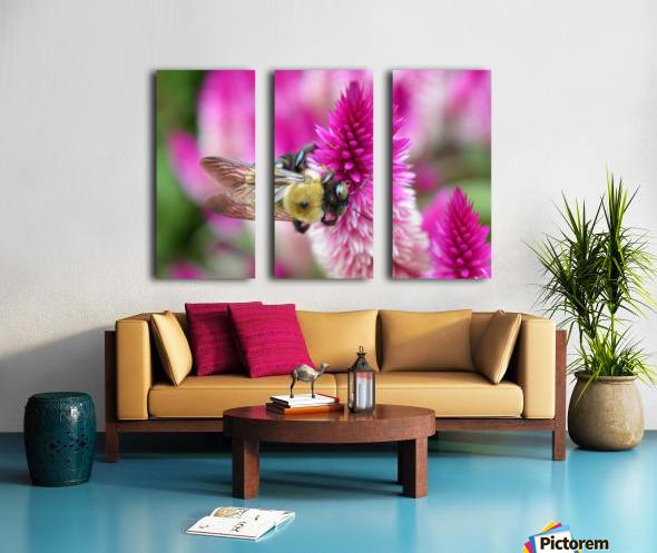 Bee On Pink Flower Photograph Split Canvas print