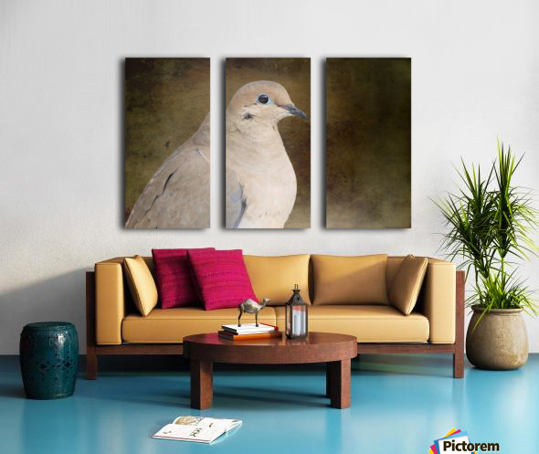 Mourning Dove Split Canvas print