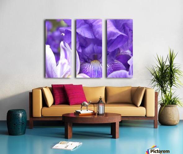 Blue Iris Photograph Split Canvas print