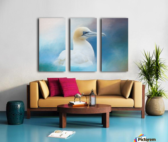 Northern Gannet ver2 Split Canvas print