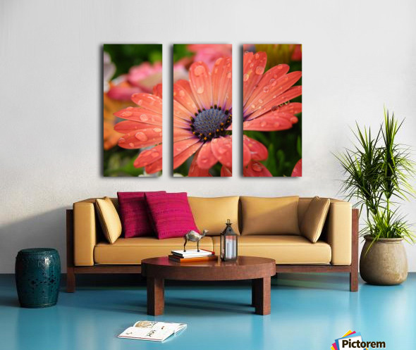 Orange Flower Covered In Rain Drops Photograph Split Canvas print