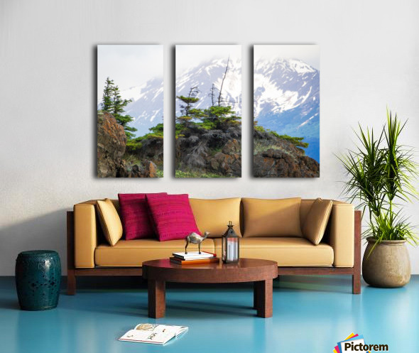 Alaska Scenery Pictures - Cliffs and Mountains Toile Multi-Panneaux