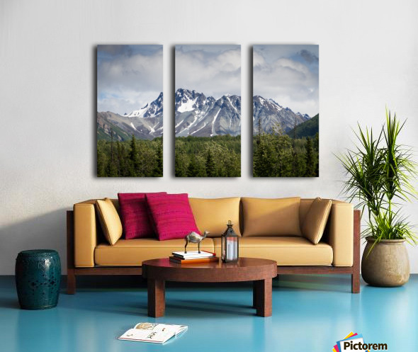 Alaska Mountain Range Split Canvas print