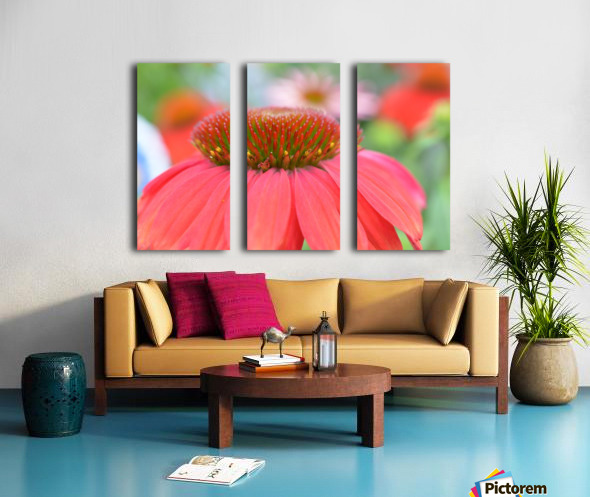 Orange Flower Photograph Split Canvas print