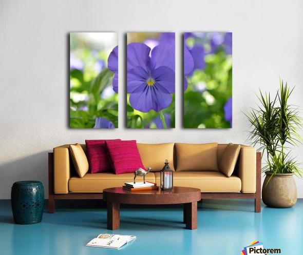 Blue Pansy Photograph Toile Multi-Panneaux