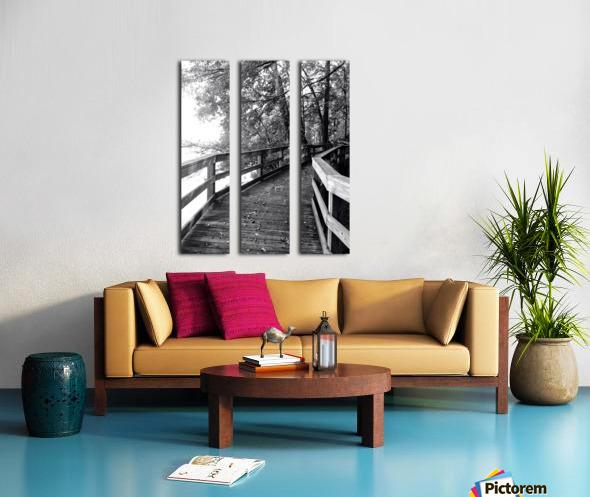Walkway Split Canvas print