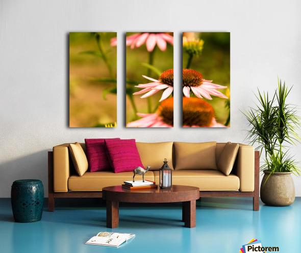 Like Sunflowers Split Canvas print