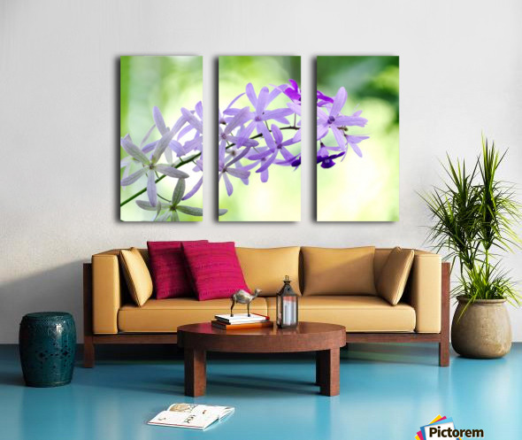 Purple orchid Split Canvas print