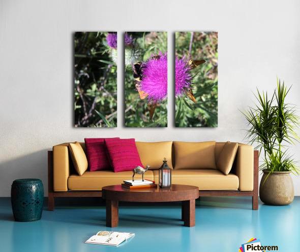Bug Heaven Split Canvas print
