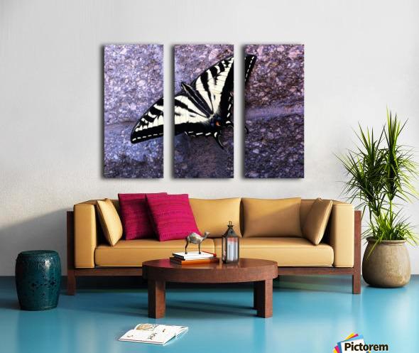Swallowtail on Stone Wall Split Canvas print
