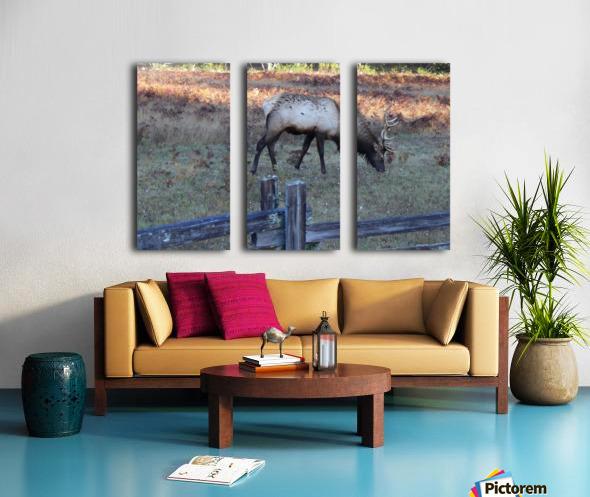 Bowing Elk Split Canvas print