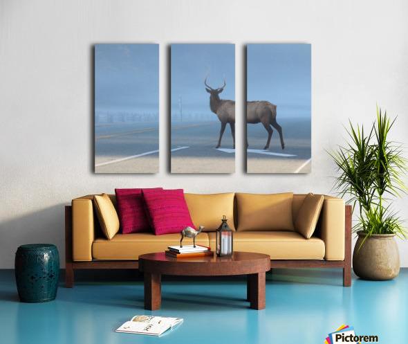 Elk Crossing Split Canvas print