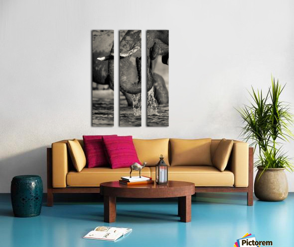 Thirst Split Canvas print