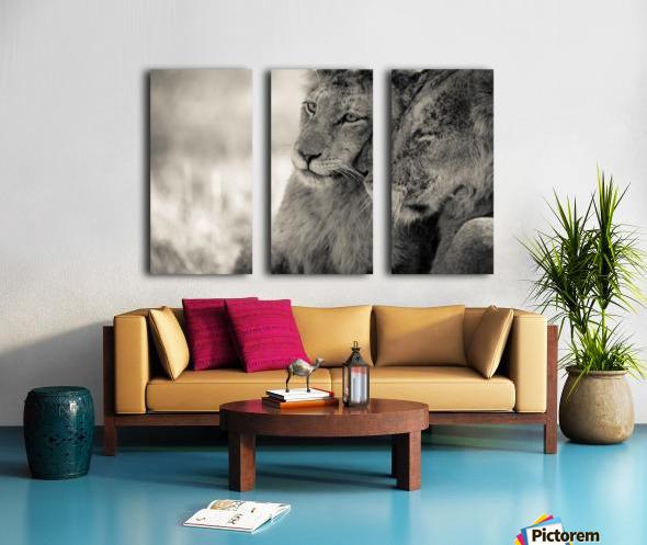 Tenderness Split Canvas print