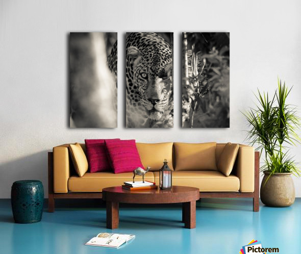 Eyes of the Leopard Split Canvas print
