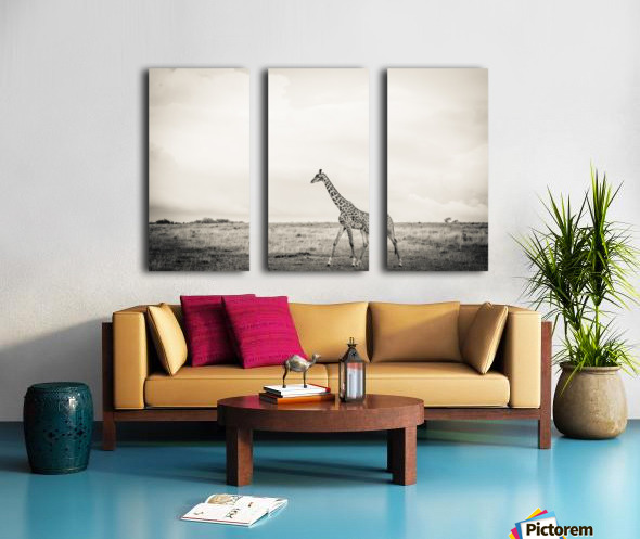 Zebrascape Split Canvas print