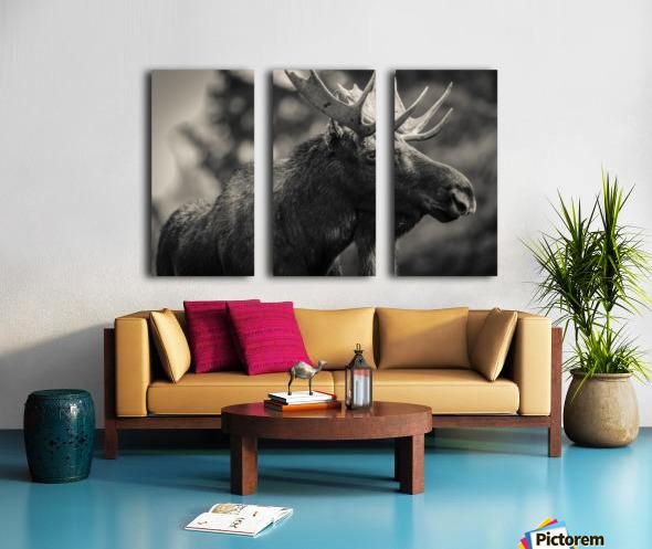 Moose Portrait - 2 Split Canvas print