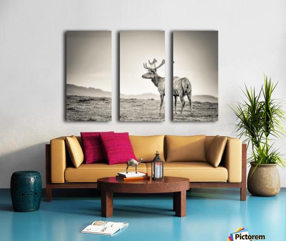 Tule Elk Split Canvas print