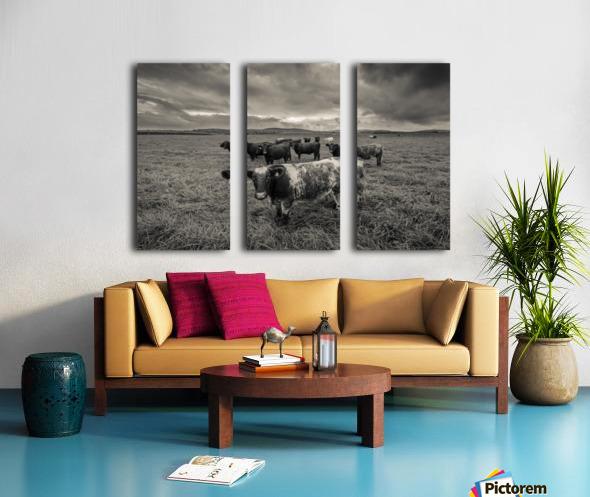 Cowscape Split Canvas print