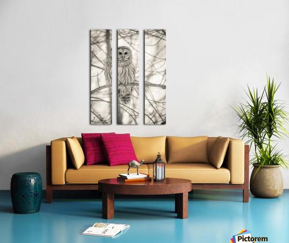 Spotted Owl - 1  Split Canvas print
