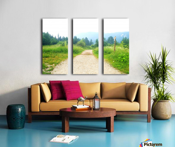dream road Split Canvas print