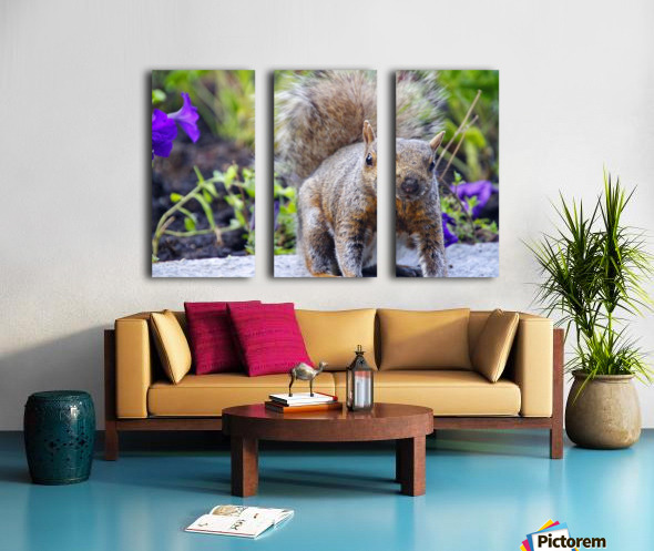 Looking for me Split Canvas print