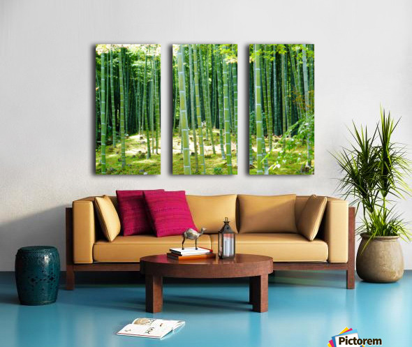 Bamboo Forest Split Canvas print