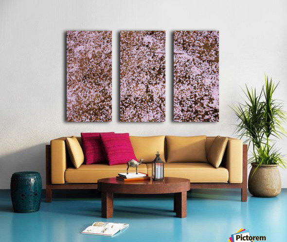 Sakura Petals Split Canvas print