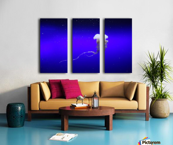 Jellyfish Split Canvas print