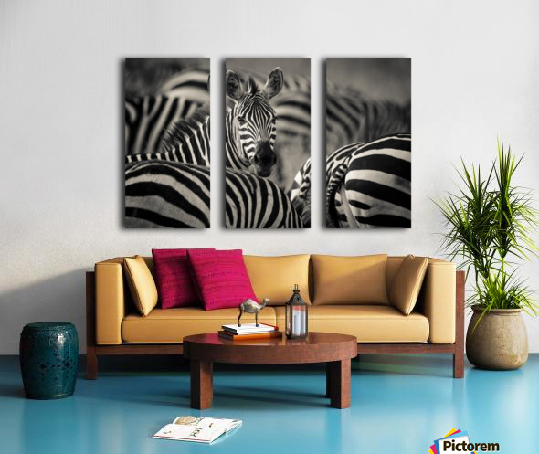 Who is there by www.jadupontphoto.com Split Canvas print