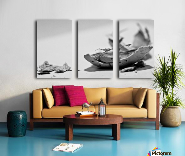 Humanity 046 Split Canvas print