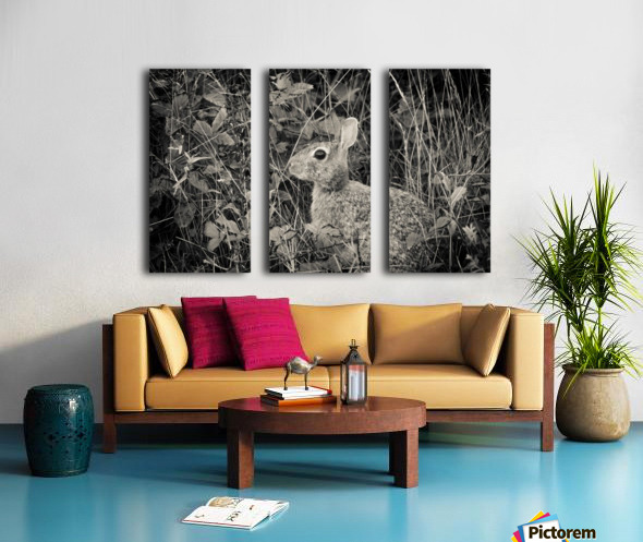 Do you see me Split Canvas print