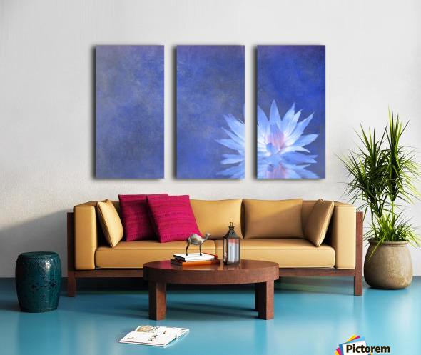 Lotus Blossom Split Canvas print