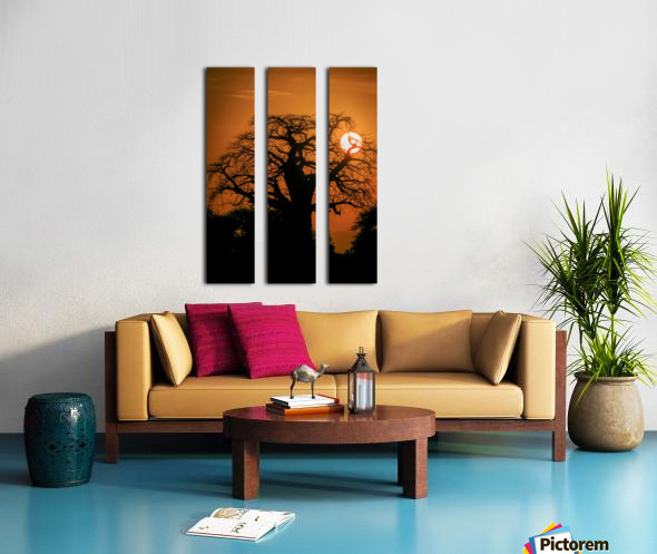 Baobab Sunset Split Canvas print